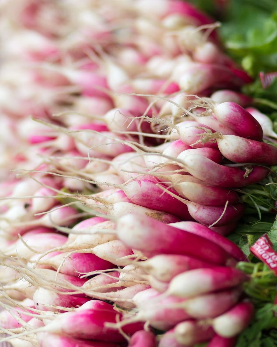 Beautiful stock photos of pink, Abundance, Boulder, Business, Day
