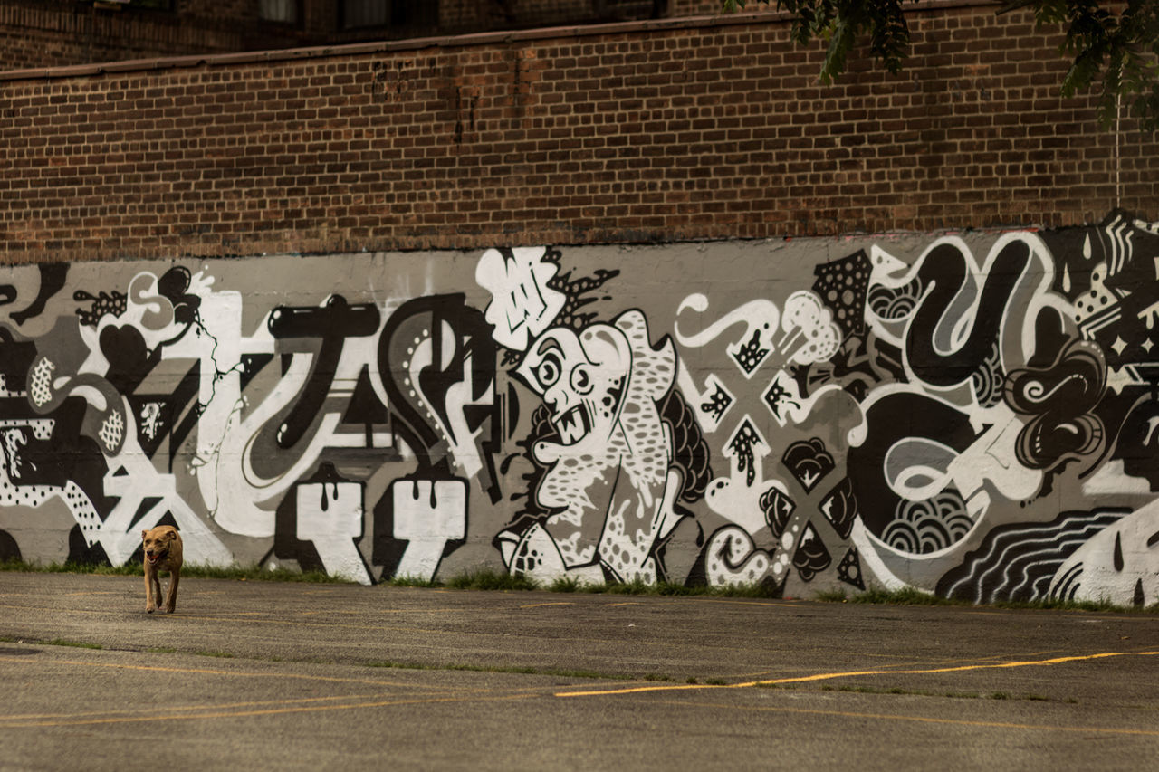 graffiti, art and craft, built structure, street art, architecture, building exterior, day, outdoors, adult, people