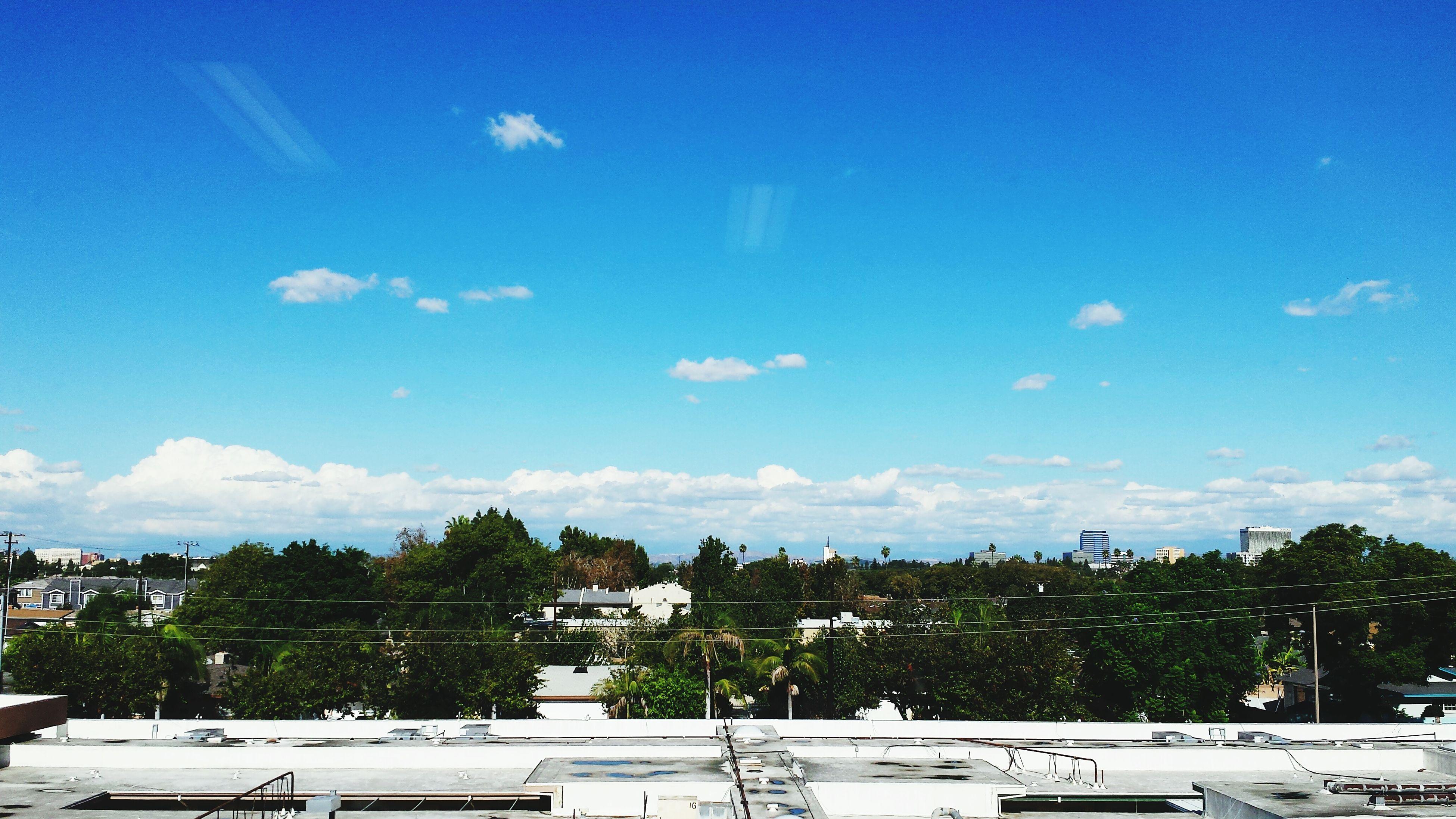 building exterior, tree, architecture, built structure, sky, blue, city, cloud, cloud - sky, day, residential building, sunlight, cityscape, residential structure, outdoors, house, growth, building, residential district, nature