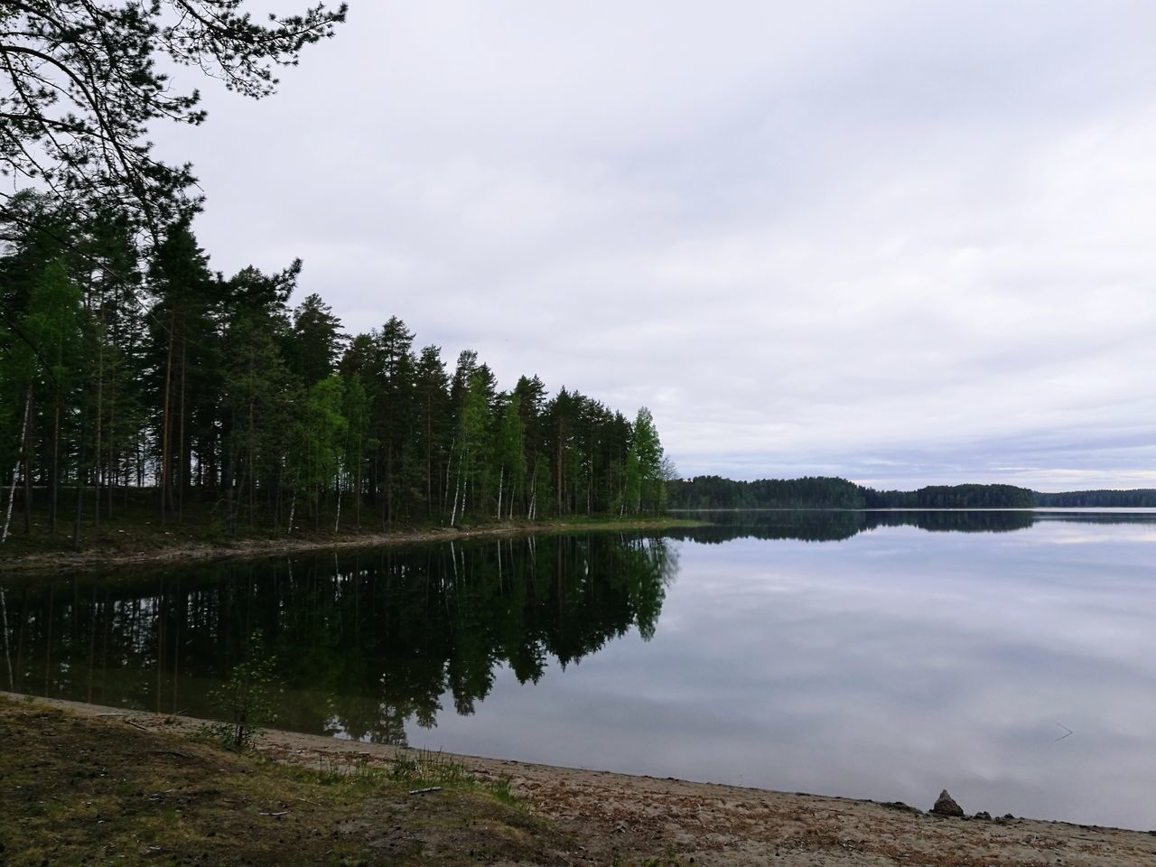 Tree Lake Water Reflection Cloud - Sky Outdoors No People Sky Tranquility Nature Landscape Beauty In Nature Vacations Scenics Day Finland :) Finland_photolovers Savonlinna Opera Festival Finlande Finland Savonlinna Finland Savonlinna Finland Punkaharju Finland Tree Area Tranquility Growth