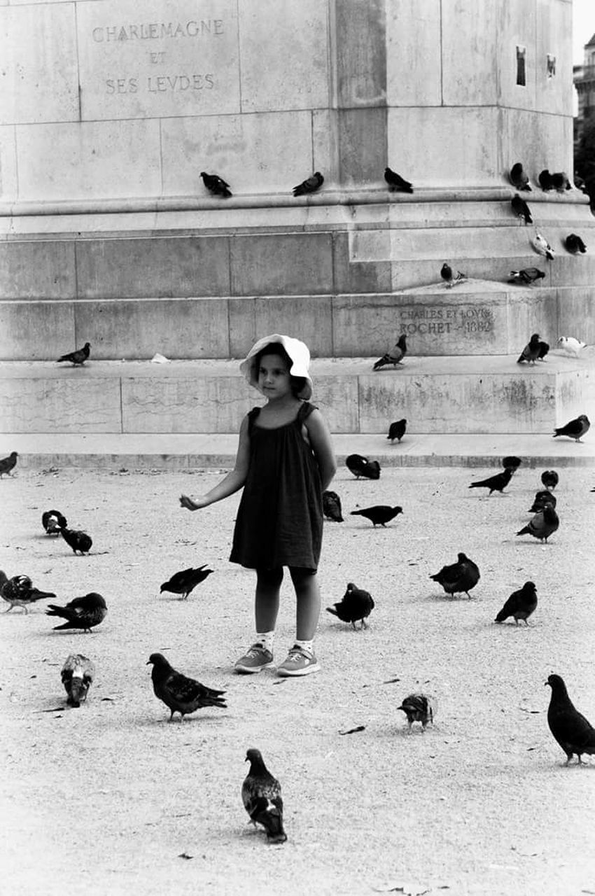 full length, one person, one woman only, one young woman only, day, only women, animal themes, architecture, young adult, outdoors, adults only, people, bird, adult