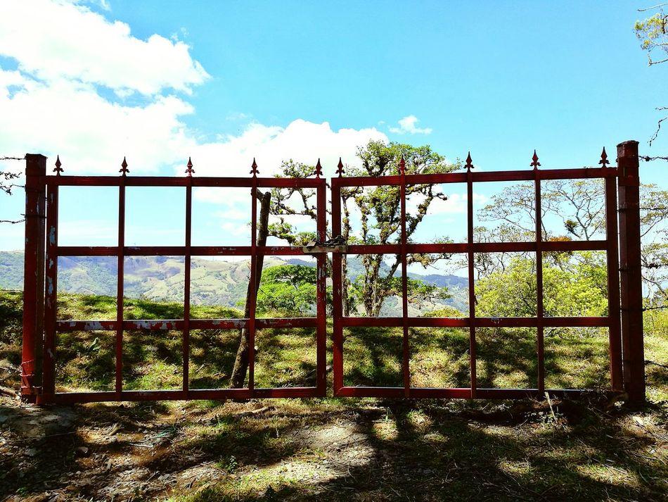 Gate Red Gate Outdoors Nature Sky No People Day Sunlight Sunlight ☀ Tree in Bebedero Escazu San Jose, Costa Rica EyeEmNewHere