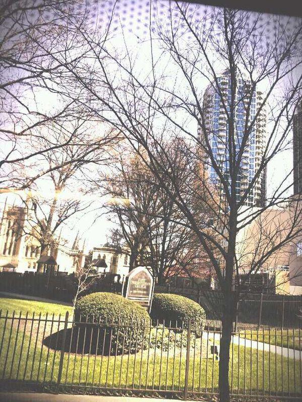 Pics Of My City Charlotte Nc