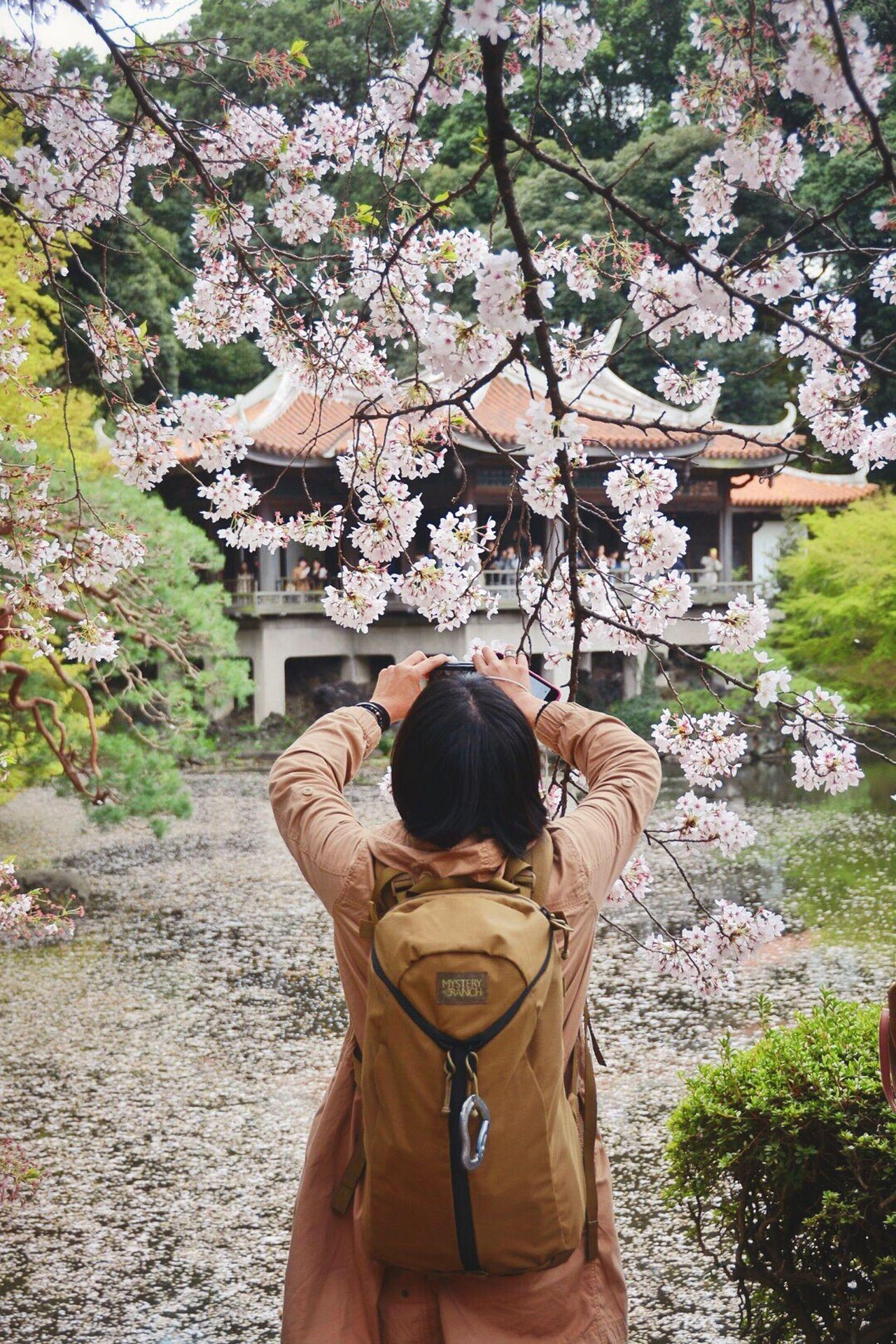 EyeEm Tokyo Meetup 8 People EyeEm Nature Lover EyeEm Best Shots Secret Garden Urban Spring Fever