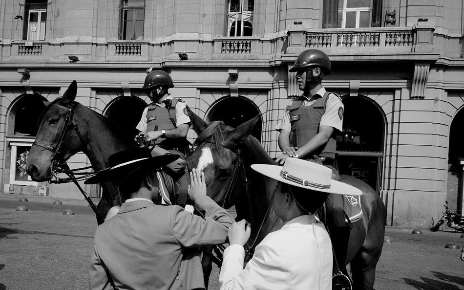 Police horses Building Exterior Horse Outdoors Real People Domestic Animals Built Structure Transportation Day Men Architecture Mammal Large Group Of People Police Force Teamwork Police Uniform Riot Adult People Blackandwhite Travel B&w Chile Southamerica B&w Street Photography Santiago De Chile