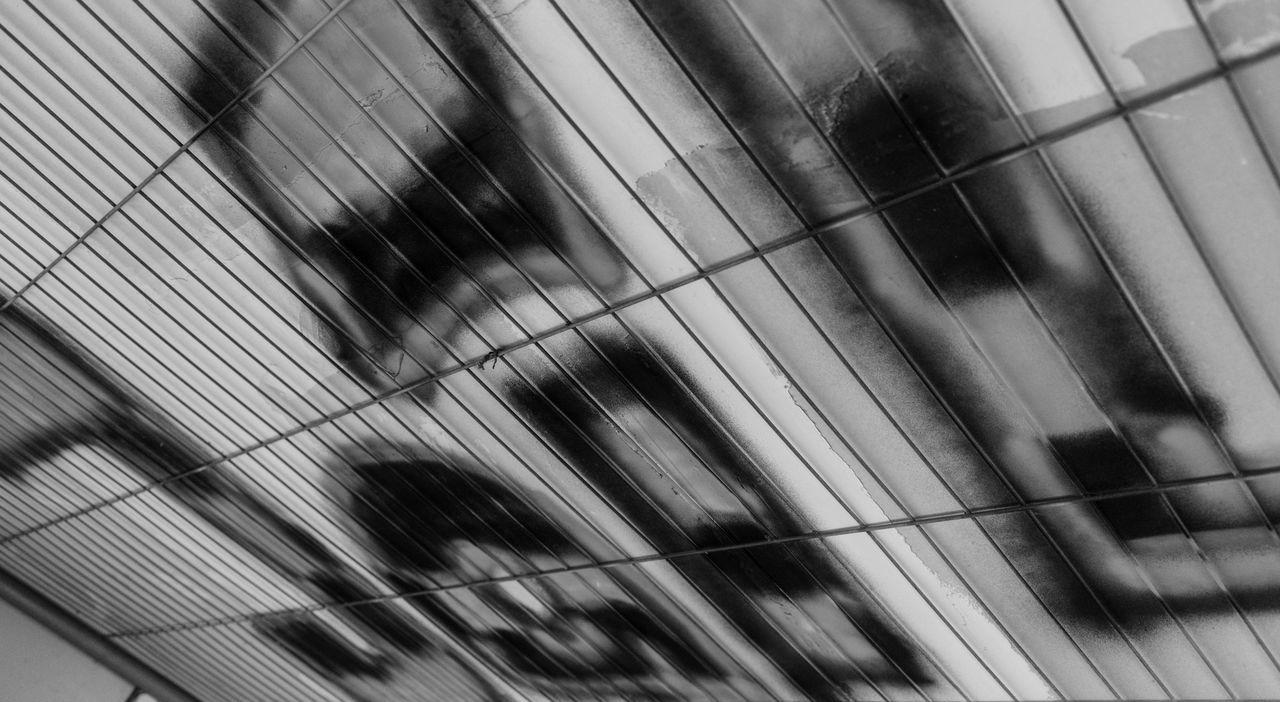 Jail B&w Street Photography Black & White Black And White Black And White Photography Black&white Blackandwhite Blackandwhite Photography Blackandwhitephotography Fence Full Frame Grafitti Hamburg Hamburg Altona Indoors  Jail Metal Nikon Nikon D750 Pattern Ruin Ruins Wall