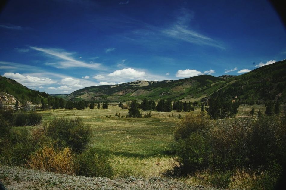 EyeEm Nature Lover Valley Nature Nature_collection Colorado Landscape Wideview Green EyeEm Landscape Colorado_collection Colorado Nature