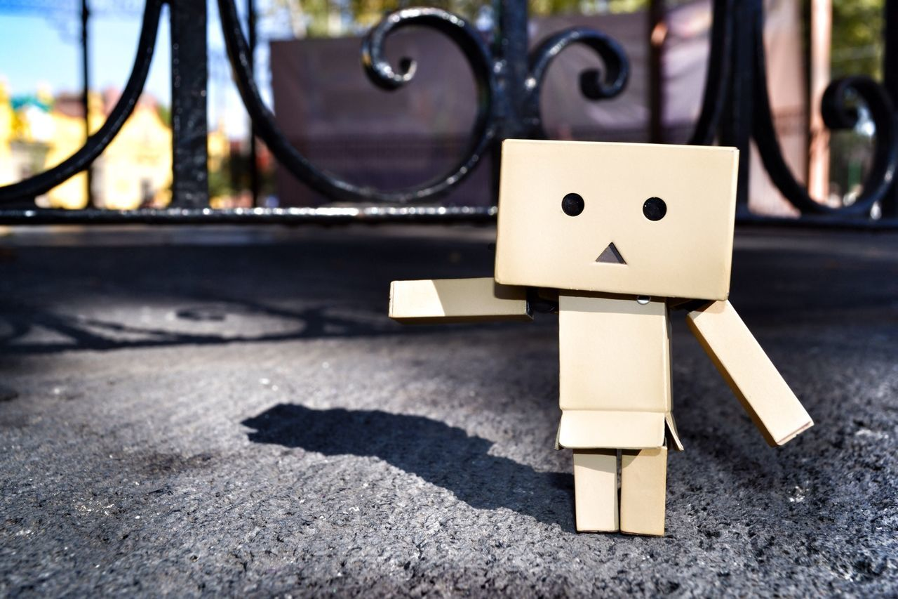 KAWAII Afternoon Danbo