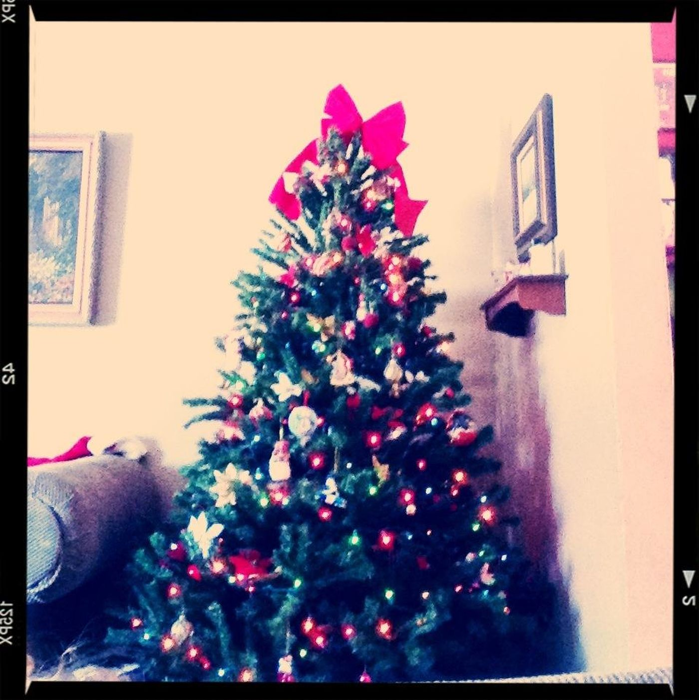 Still Enjoying Christmas!