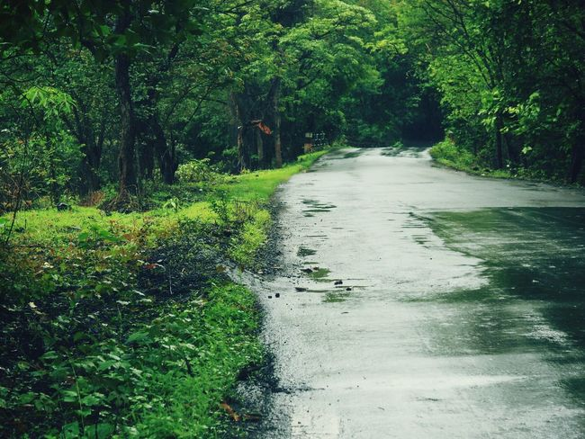 Jus a random click..... Awesome Nature In Love With Monsoon Awesome
