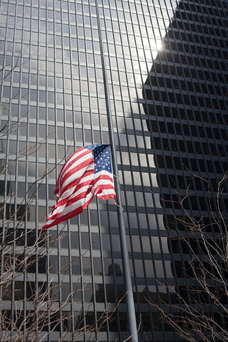 Beautiful stock photos of american flag, American Flag, Architecture, Bare Tree, Building Exterior