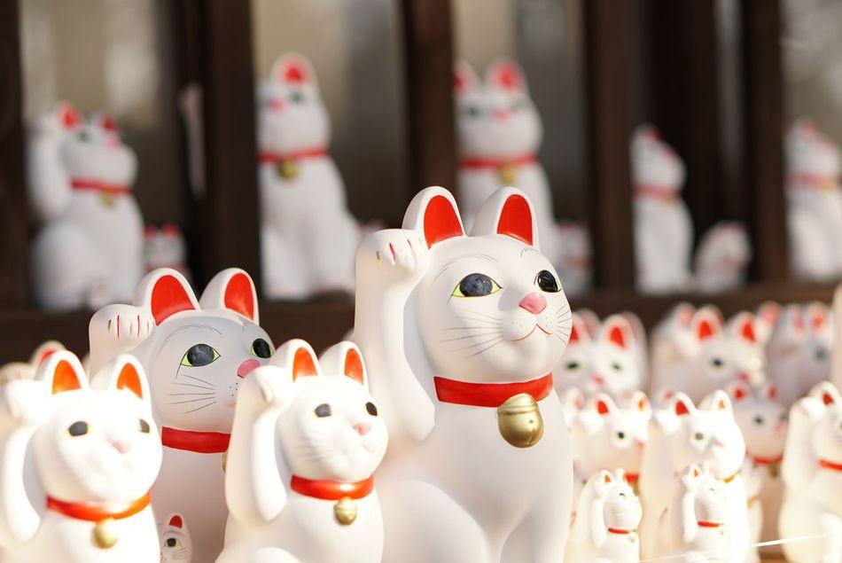 世田谷区 豪徳寺 Animal Representation Cultures No People Close-up EyeEm Gallery Eye4photography  招き猫 Japan Cat 幸運 Happy 猫 Goodday