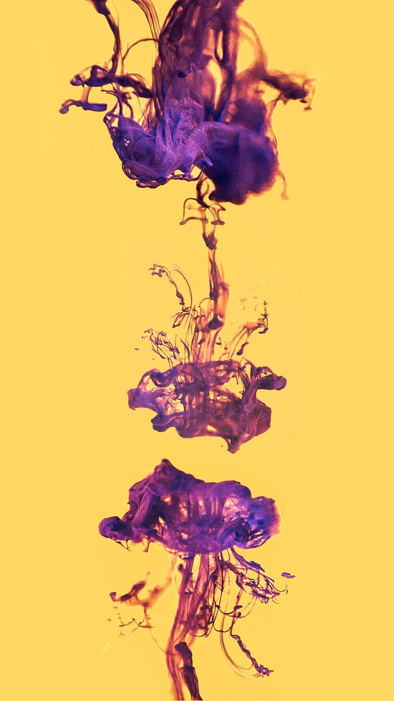 Abstract Studio Shot Vitality Motion Inspiration Colored Background Variation Yellow Multi Colored Red Ethereal Ink Growth Close-up Dissolving Fragility No People