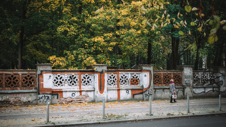 Autumn Autumn Collection Autumn Colors Autumn Leaves Autumn🍁🍁🍁 Berlin Berlin Photography Berlinstagram Day Graffiti Outdoors Street Street Photography Streetart Streetphotography Tree Walking Wall Woman