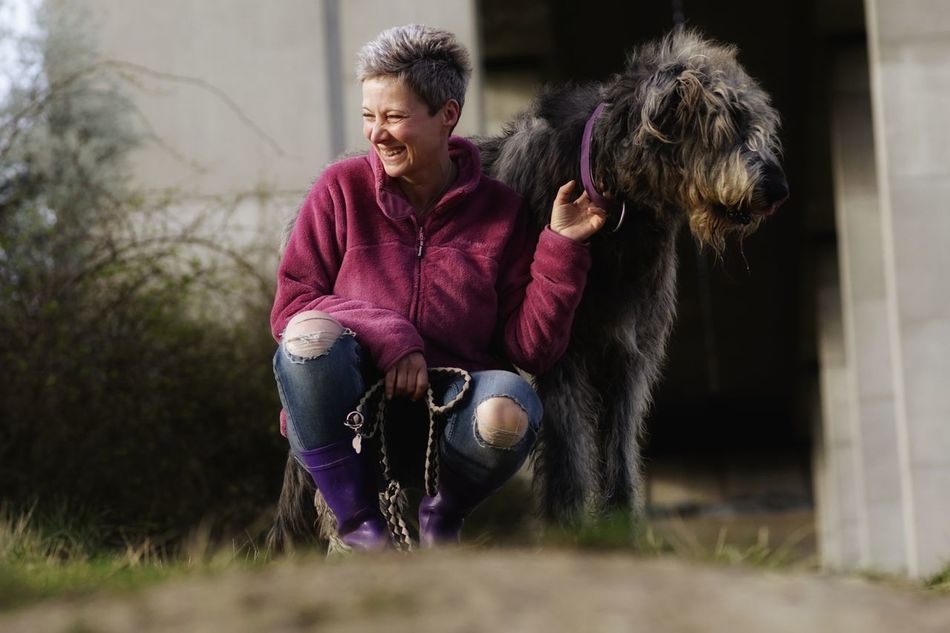Sitting Beard Leisure Activity Have A Nice Day♥ Hello World Outdoors Sunlight Gentle Giant. Irish Wolfhound Irishwolfhound Willi The Wolfhound Irish Wolf Hounds. Domestic Animals Lovedogs Mommys Boy❤ Wrong Direction
