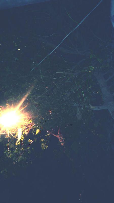 Ramadan Mubarak🌜🌒🌓🌔🌕🌖🌗🌘🌛 Night Home Is Where The Art Is @lamine Fly England ➡🏡 EyeEm Gallery Frozen Nature Kurtcobain Likeforlikes Likeforfollow Likesforlikes Sana Dreamscapes & Memories Draw Sleeping Beauty Sleeping Time Nopeople Beauty In Nature