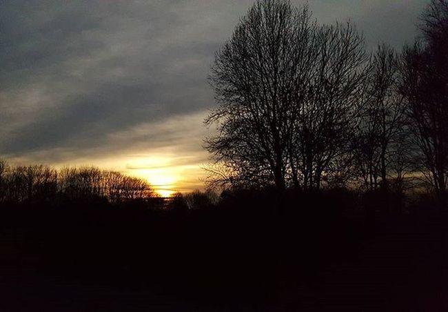 Nofilter Sunscape Clouds Cloudscape Nature_shooters Cloud_shots Sky_shooters Nature Sun Sunset Sunset_shots Cloudporn Skyporn Sky Cloud Nature Landscape Ig_clouds Ig_nature Ig_sunset Fotofanatics_sky_
