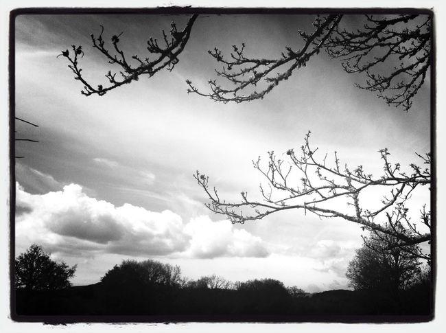 Black & White Enjoying The Sights Trás-os-Montes