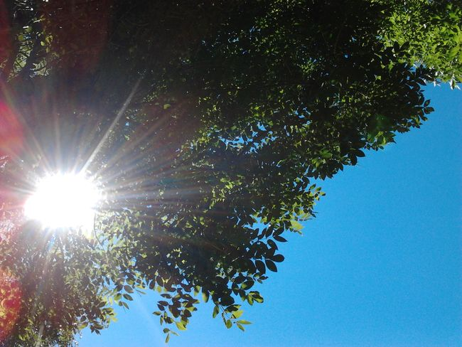 Natur Sun Relax ❤