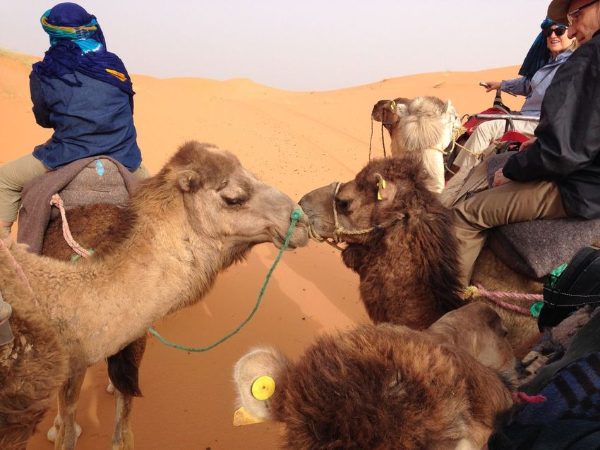 Morocco Travelling IPhone Iphonephotoacademy