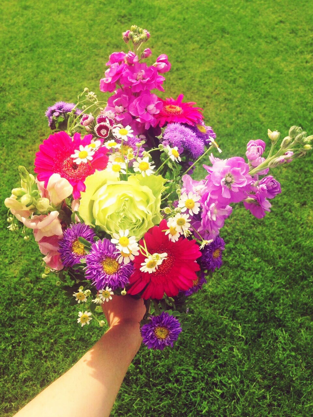 Flower Human Hand Grass Human Body Part Nature Freshness Holding Petal Beauty In Nature Fragility Growth One Person Real People Outdoors Flower Head Day Bouquet Of Flowers beautiful day with a beautiful bouquet 🌷💐
