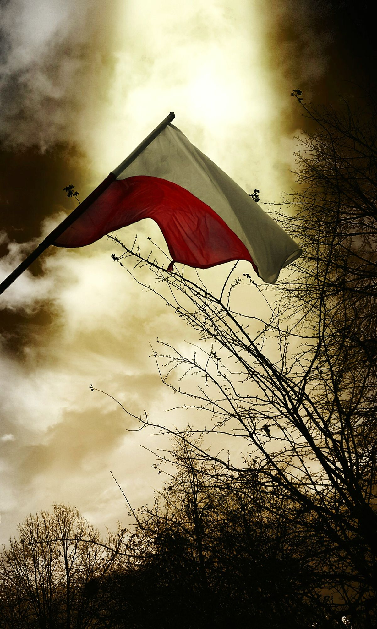 Polskajestpiekna Polska Poland 💗 Samsung A5 Poland Poland Gdańsk Polish Niepodległości 11listopada Flaga Flag Flags In The Wind  Gdansk święto_niepodległości Gdańsk 👌🏼 Gdansk (Danzig) Gdansk,poland Gdansk 2016