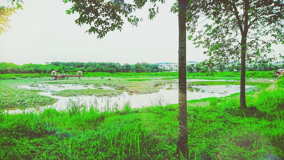 Kotadamnsara
