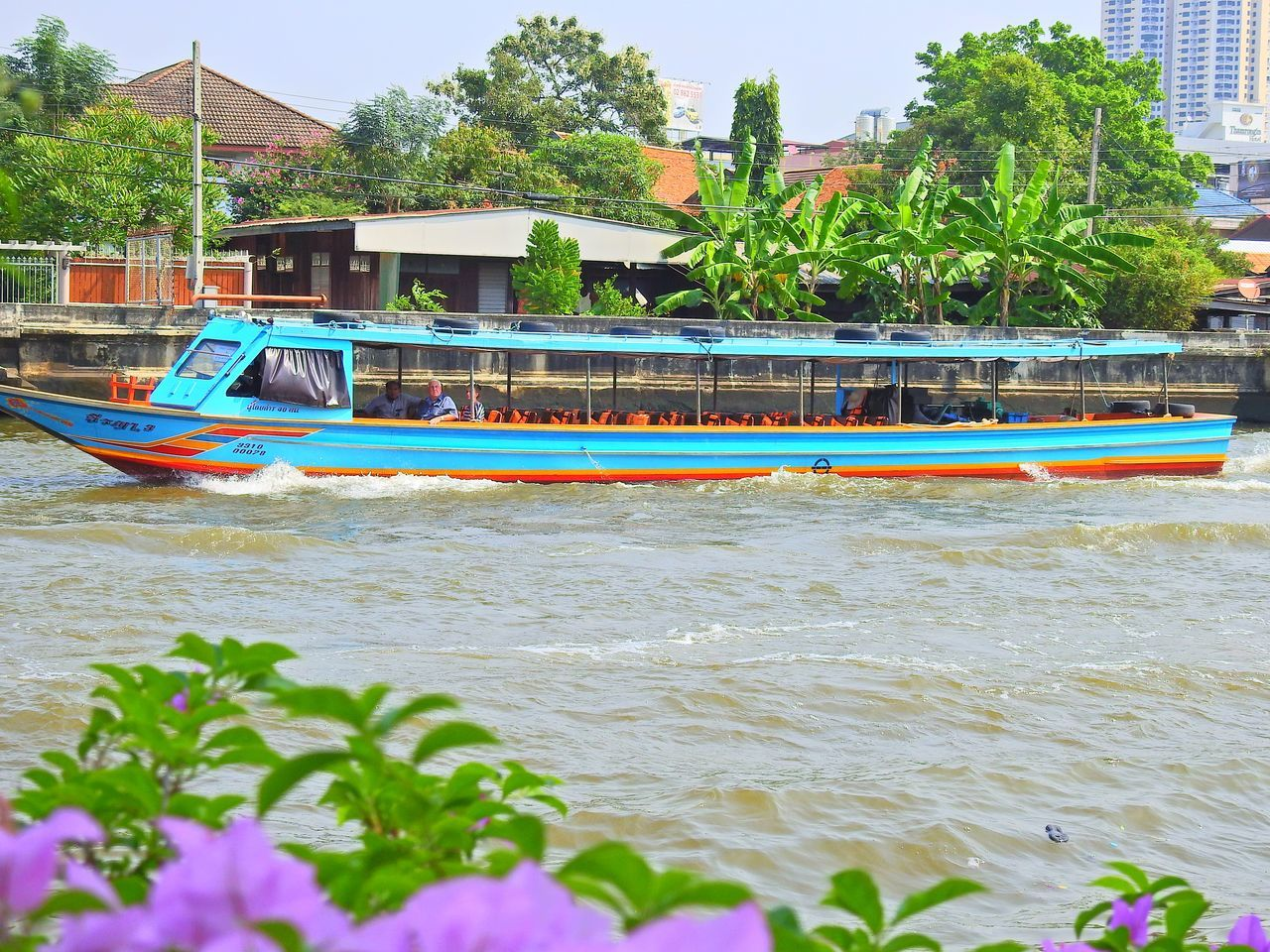 nautical vessel, transportation, mode of transport, boat, tree, architecture, day, water, built structure, moored, building exterior, no people, outdoors, nature, sea, sky