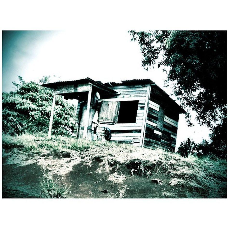 Noir NaturalBeauty Nature Blackandwhite Blancoynegro Beautiful Hut Shack Shack_sniper Grenada Horeb Humbleandwise Islandlivity Islandlife Instagood
