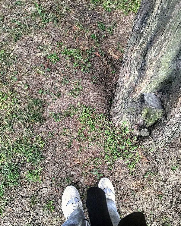 That's Me Hello World Hi! Taking Photos Enjoying Life Taking Photos Lifeisbeautiful Morning Run A Way Run Run Run