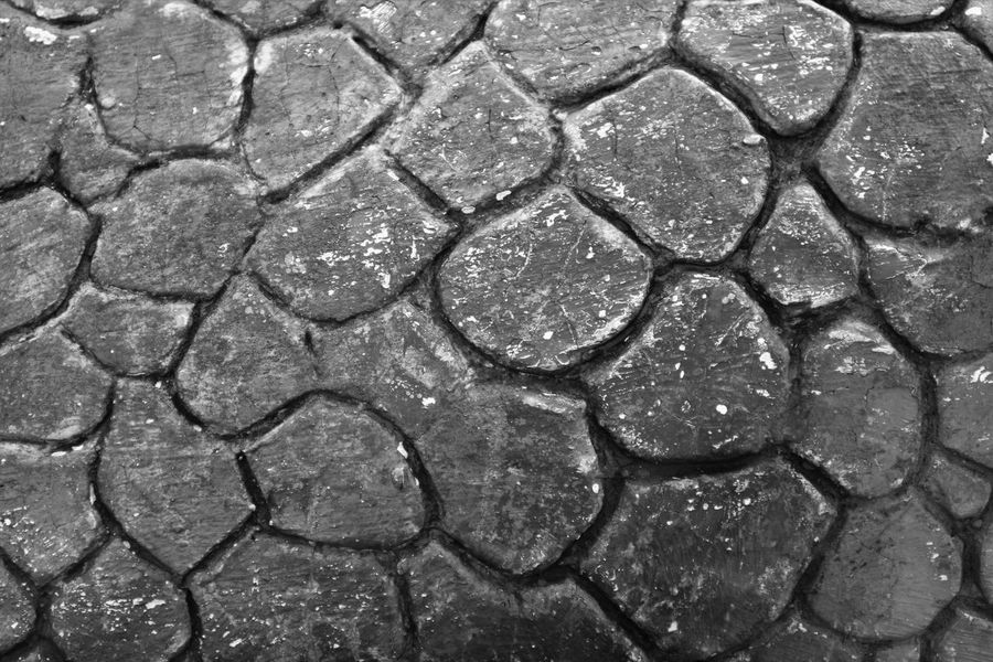 abstract pattern wall in monochrome color background Wall Abstract Backgrounds Close-up Full Frame Monochrome No People Pattern Skin Surface Textured