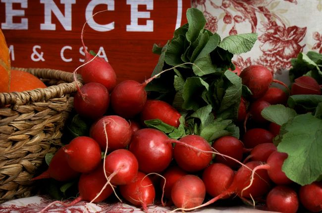 Michigan Farm Markets Healthy Food Vegetables Radishes Sign Toile Basket Greens Fine Art Photography