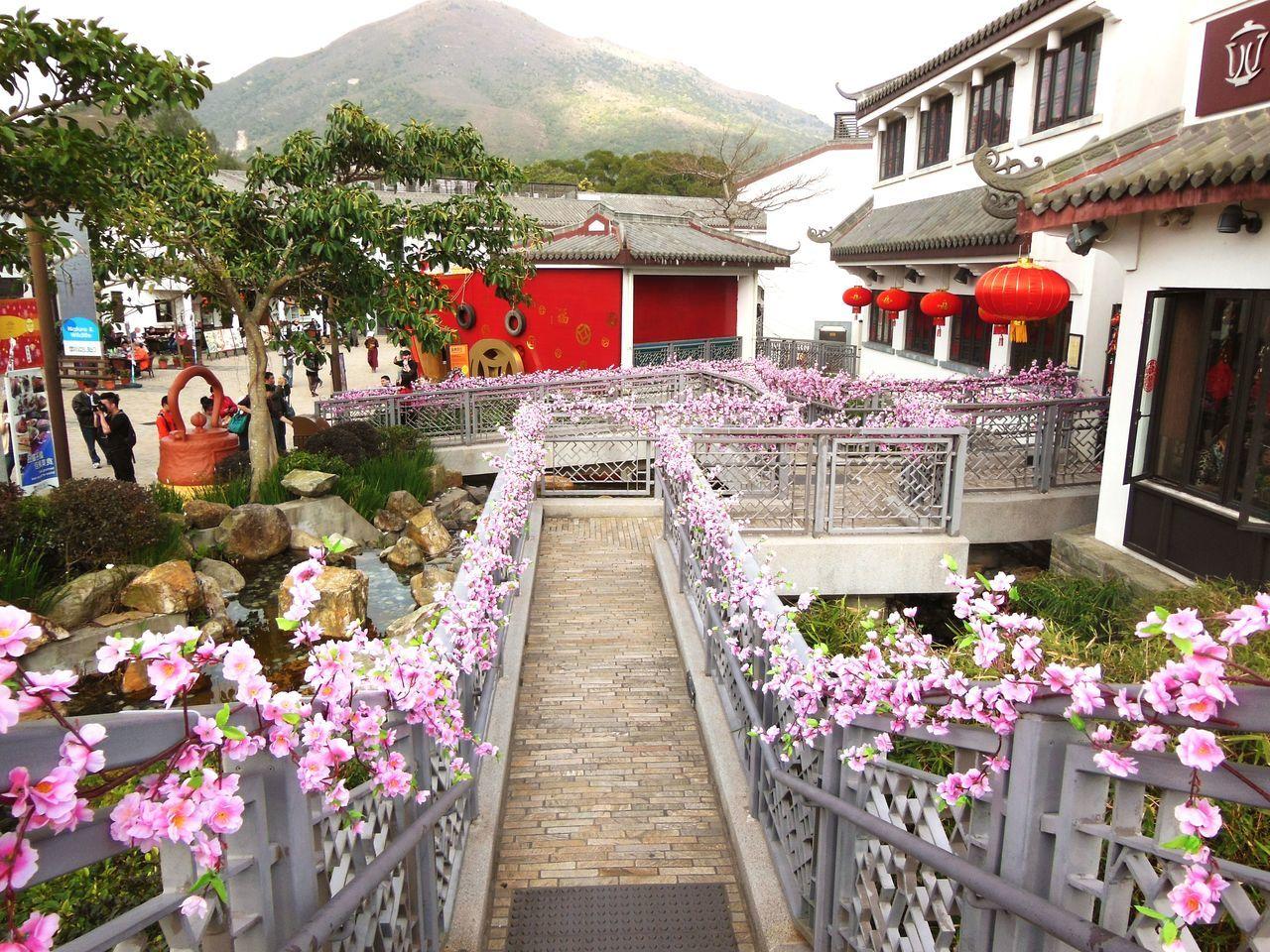 Tian Tan Buddha (Giant Buddha) 天壇大佛 Big Buddha HongKong Lantau Island NgongPing