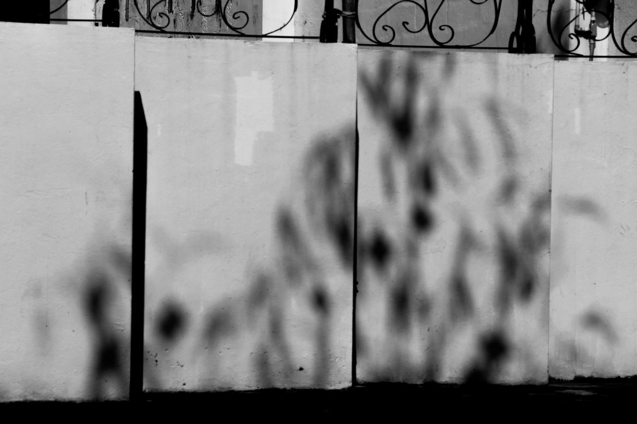 Black & White Photography Blackandwhite Close-up Day Graffiti Outdoors Shadow Streetphotography