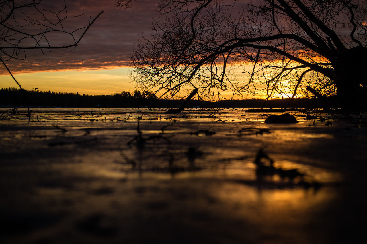 Bare Tree Beauty In Nature Branch Cloud - Sky Cold Temperature Lake Landscape Nature No People Outdoors Puddle Reflection Reflection Lake Scenics Sky Sunset Tranquil Scene Tree Water Ice Dramatic Sky Tranquility Betterlandscapes