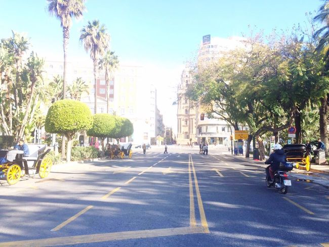 City Street Tree Architecture City Life Outdoors Day People Sky Spain♥ Malaga Junction