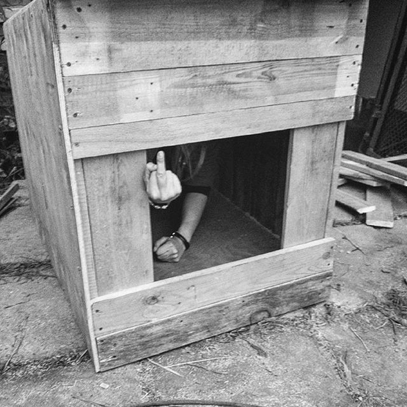 Вот дом который построил Джек. домкоторыйпостроилджек домикдядюшкитыквы фак Vscocam mobilephotography