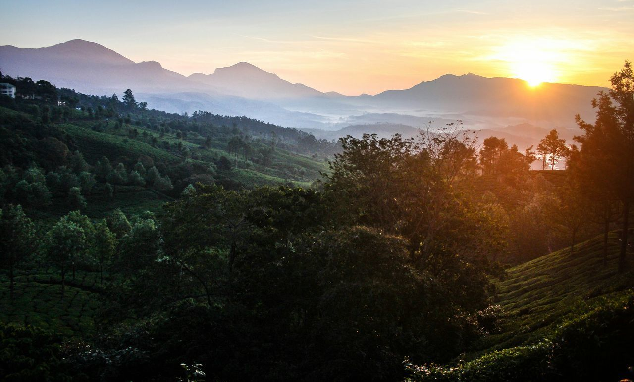 MunnarHillstation Munnar Suryanelli Sunrise Tree Nature Mountain Forest Morning Landscape Beauty In Nature Cold Temperature No People Morningvibes Outdoors Mountain Range GodsOwnCountry