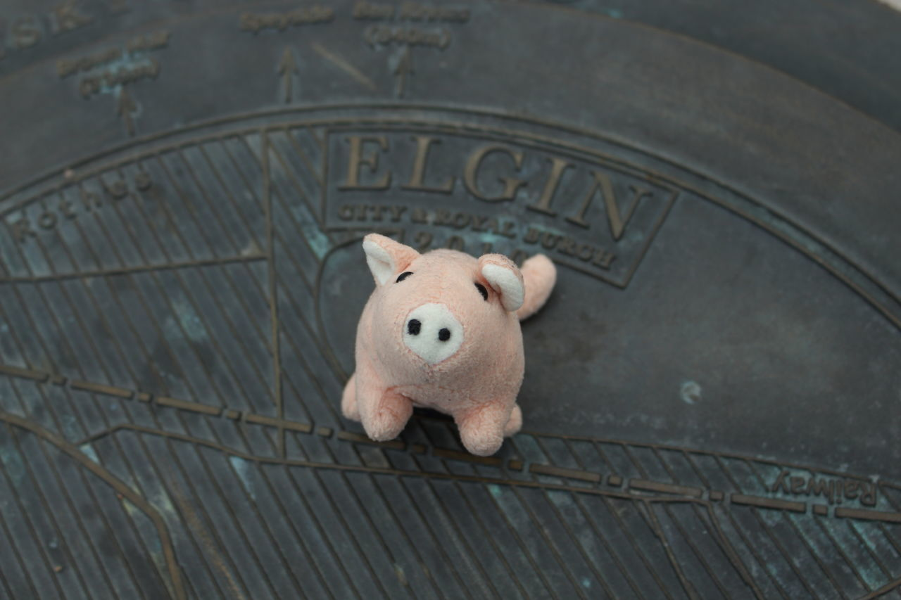 toy, stuffed toy, no people, indoors, savings, teddy bear, day, close-up