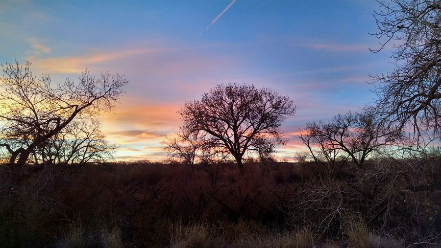 Everyday Joy Sunset abq