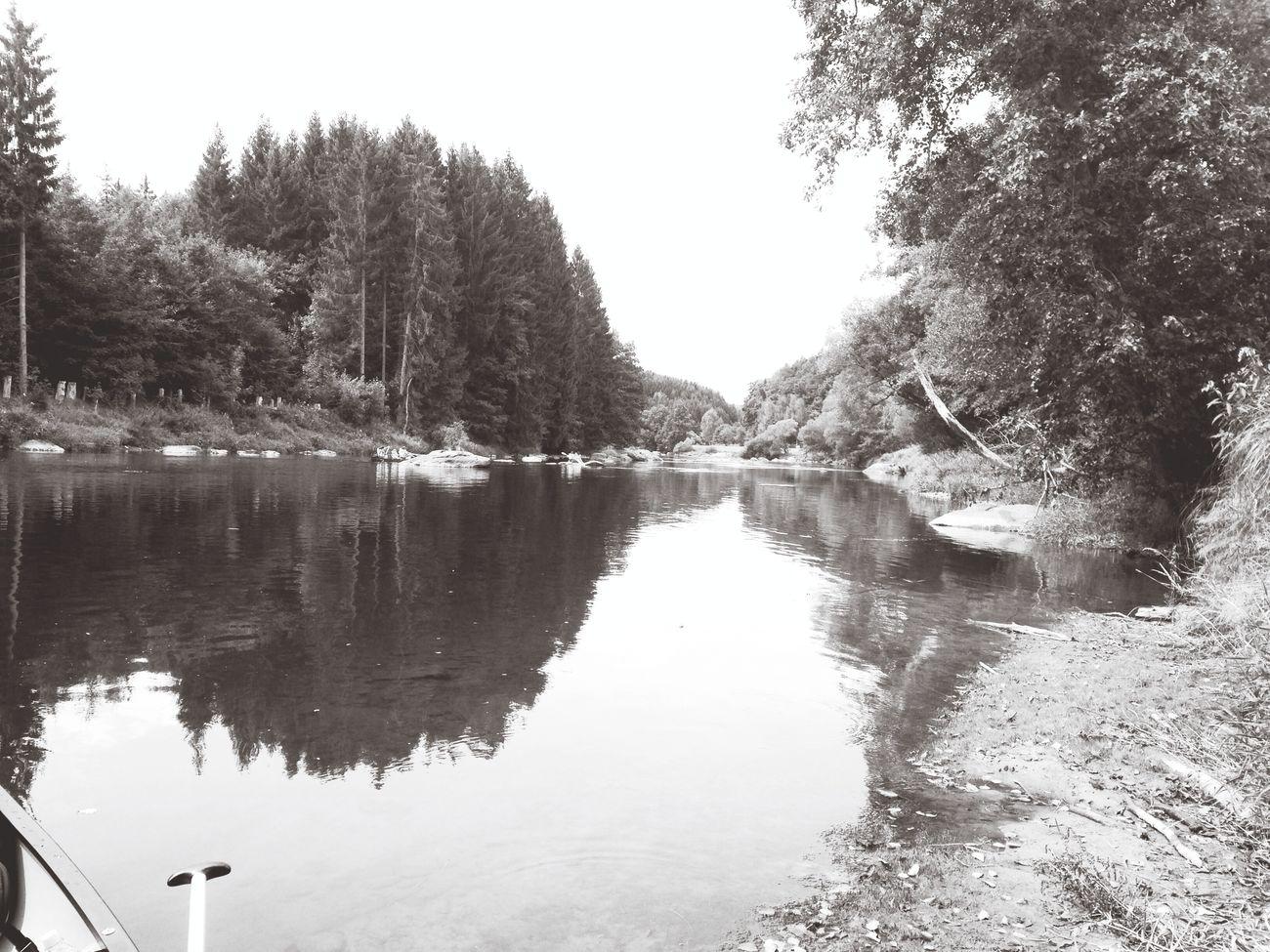 Canoe River Nature In Black & White Bayrischer Wald