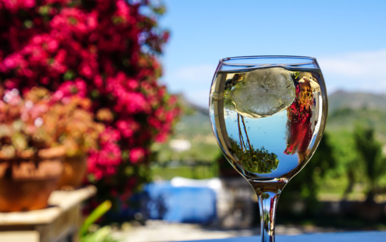 Alcohol Alcoholic Drink Beauty In Nature Clear Sky Close-up Day Drink Drinking Glass Flower Focus On Foreground Food And Drink Fragility Freshness Nature No People Outdoors Sky Table Wine Wineglass