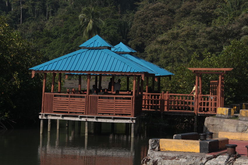 Road Trip from Port Blair to Long Island, Andaman Nicobar Islands Andaman And Nicobar Islands Andaman Sea Arecanut Tree Beach Photography Boats⛵️ Canopy Of Trees Islands Mirgal Outdoors Port Blair Sea And Sky Surmai Surmai Reef Tourist Attraction