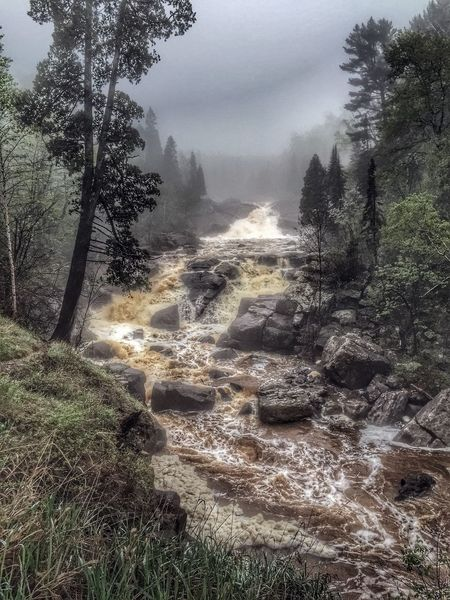 Baptism River, Minnesota. Nature Forest River Waterfall Fog Foggy Foggy Day Rain Rainy Days Woods Water Motion Ecology Ecologic Ecological Ecología Overhead View Overhead Trees Baptism River Lake Superior North Shore North Shore Minnesota