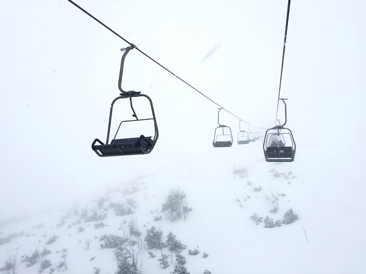cold temperature, snow, winter, nature, weather, ski lift, transportation, hanging, beauty in nature, overhead cable car, outdoors, mode of transport, snowing, day, fog, scenics, no people, sky, tree