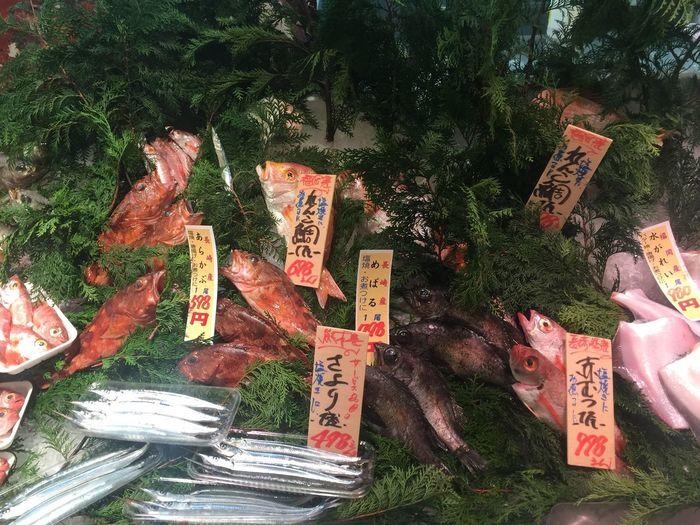 Fish Market Japan Japanese Culture Japanese Food WASHOKU 和食 日本食 魚 Fish Sakanaya Ultimate Japan