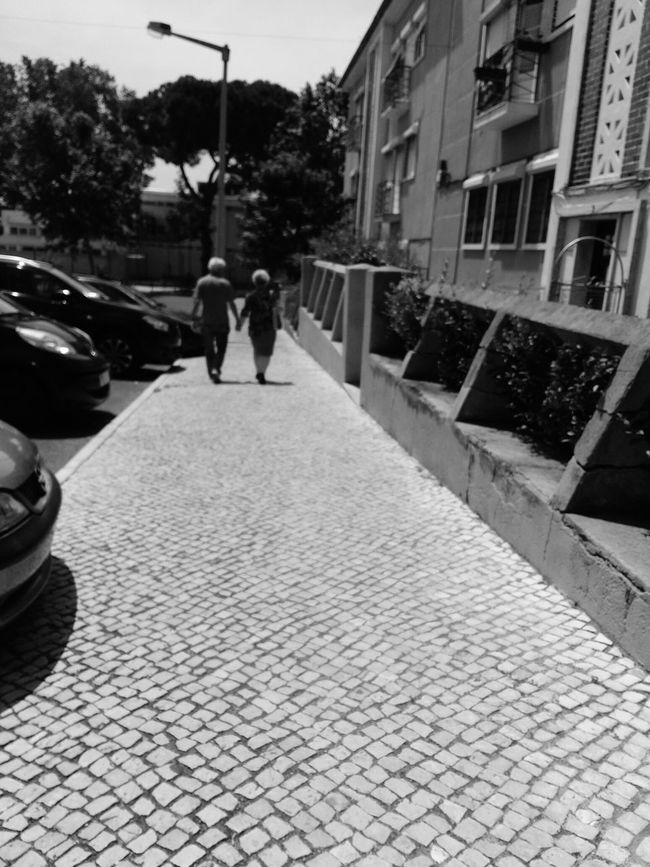 Feel The Journey Oldlovelyphotoofthatday Oldlove Immortallove Loveneverdies Lifelovers Lisboa Portugal Photographylovers Greenlifestyle Portugal Oficial Fotos Colection EyeEm© FireLovers Eternal Love Passion Passionforphotography
