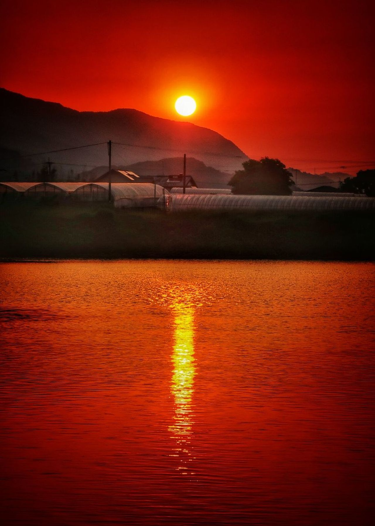 朝日 日の出 水面 空 池 湖 ビニールハウス 鏡 Farm Lake Water Reflection Reflection Sunlight Sunrise Sunset Sun Orange Color Beauty In Nature Beautiful View EyeEm Nature Lover EyeEm Best Shots Nature Morning Sun Morning