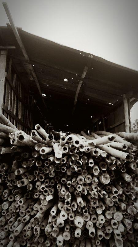 Bamboos Streetphotography Black & White