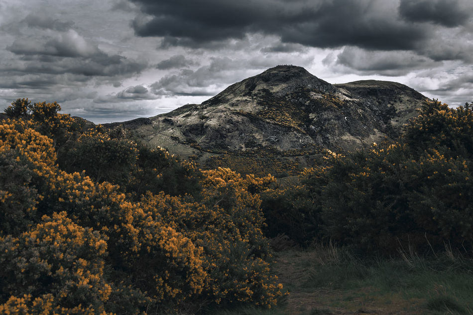 Arthur's Seat Beauty In Nature Bushes Cloud - Sky Landscape Mountain Nature Outdoors Scenics Scotland Tranquil Scene Tranquility